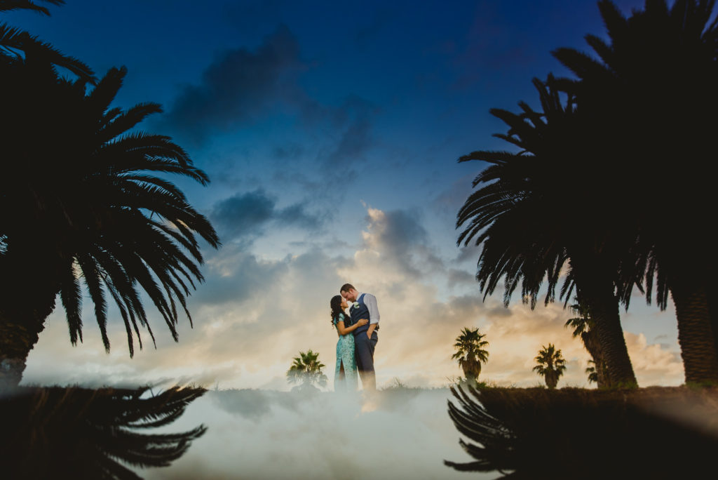 Bride and Groom between palms in Paihia